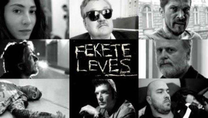 magyar film torrentek letoltes