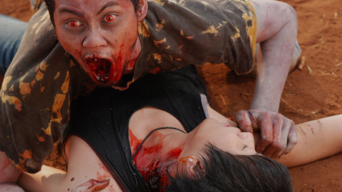 udine_phobia2003