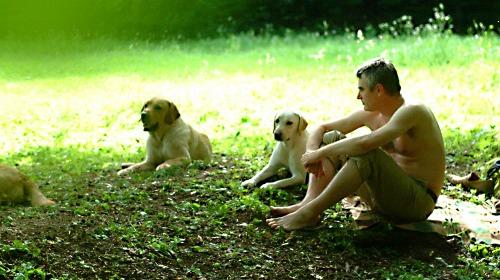 kutyakatelengedtem_03_500